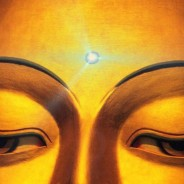 LAYA YOGA – cea mai eficientă tehnică de purificare și disciplinare a mintii